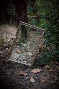 spiegel bos